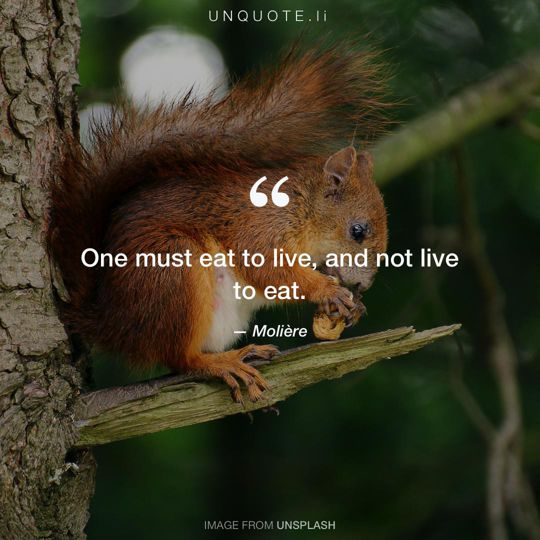 Image from Unsplash remixed with quote from Molière.