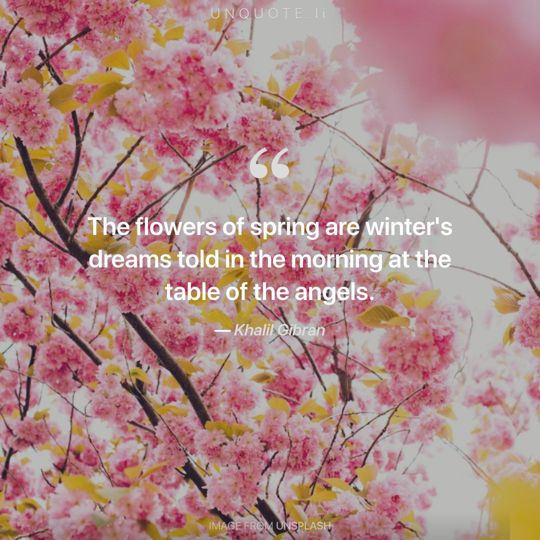 Image from Unsplash remixed with quote from Khalil Gibran.