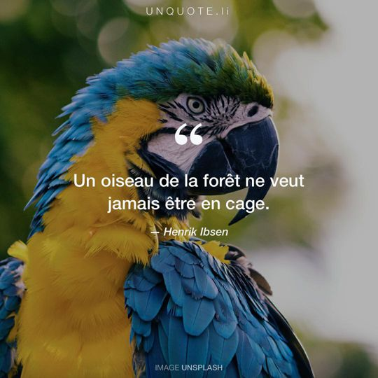 Image d'Unsplash remixée avec citation de Henrik Ibsen.