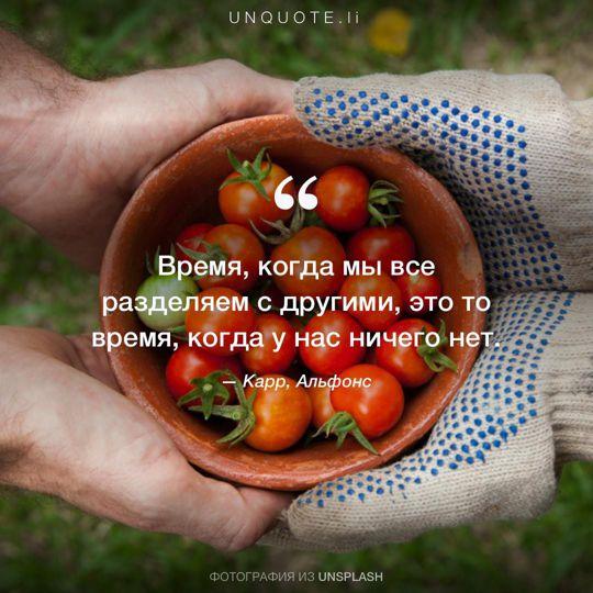 Фотографии от Unsplash цитата: Карр, Альфонс.