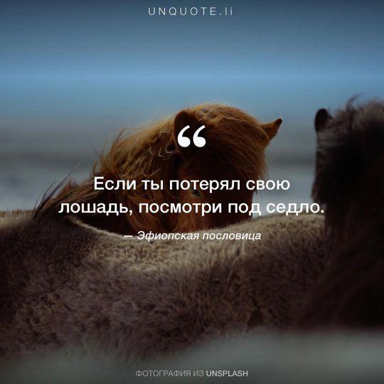 Фотографии от Unsplash Эфиопская пословица.