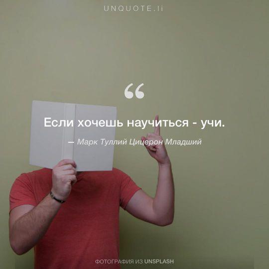 Фотографии от Unsplash цитата: Марк Туллий Цицерон Младший.